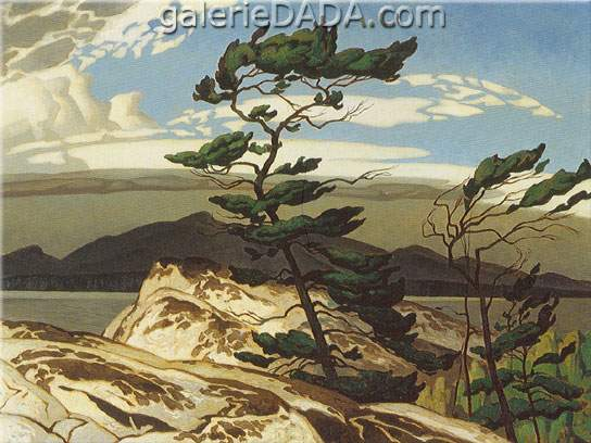 Alfred J. Casson, White Pine Fine Art Reproduction Oil Painting