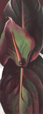 Georgia OKeeffe, Canna Leaves Fine Art Reproduction Oil Painting