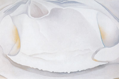 Georgia OKeeffe, Clam Shell Fine Art Reproduction Oil Painting
