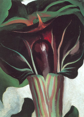 Georgia OKeeffe, Jack-in-the-Pulpit No.I Fine Art Reproduction Oil Painting