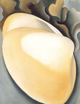 Georgia OKeeffe, Tan Clam Shell with Seaweed Fine Art Reproduction Oil Painting