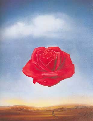 Salvador Dali, Meditative Rose Fine Art Reproduction Oil Painting
